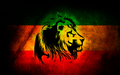 Lion Reggae Jamaica - roots-rock-reggae photo
