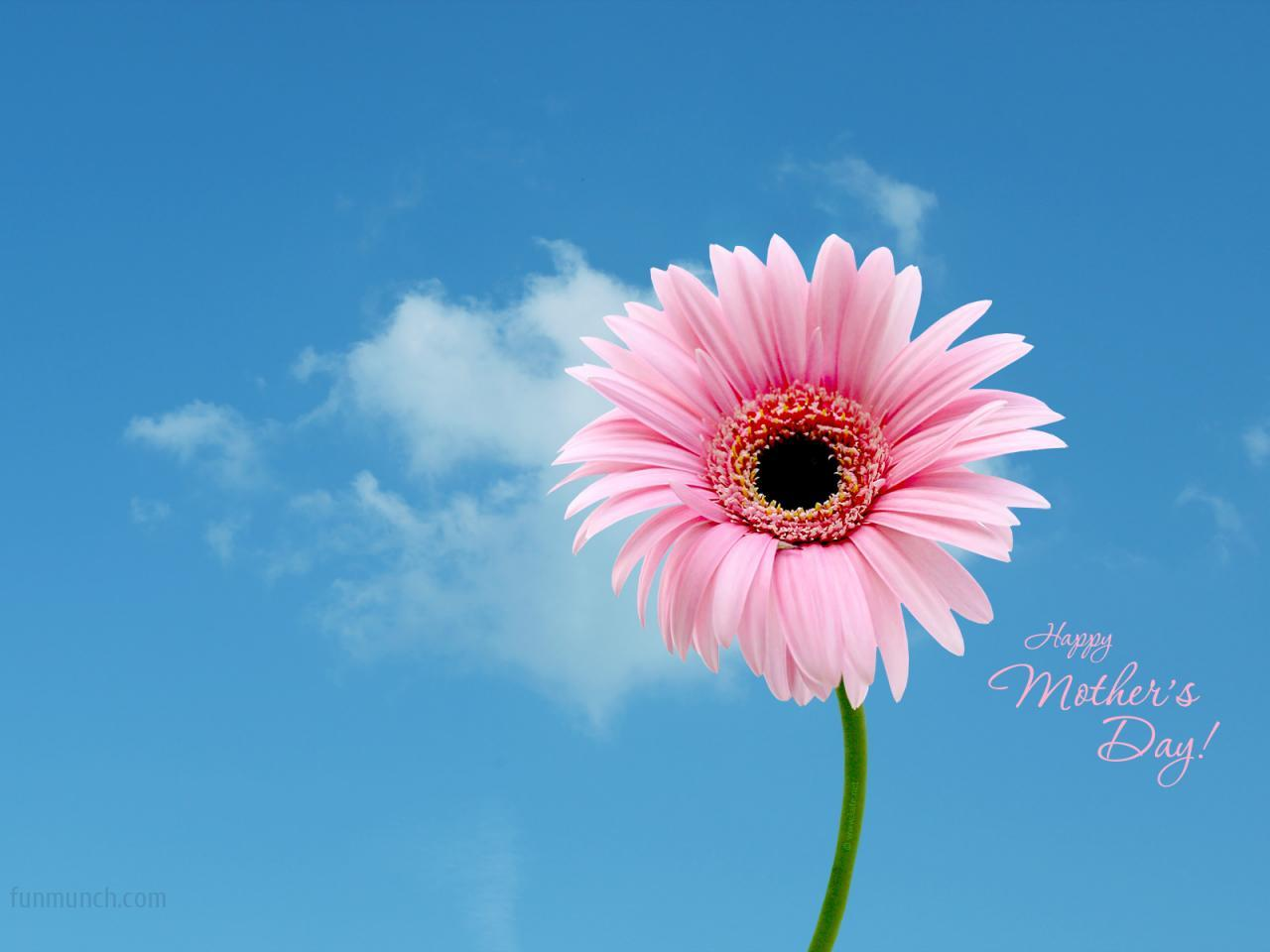 Mother's Day Images Mother's Day HD Wallpaper And