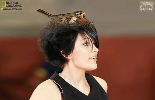 Paris Jackson National Geographic Bird Nest (@ParisPic)