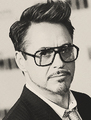 ROBERT DOWNEY JR. - robert-downey-jr fan art