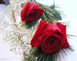 mga rosas For My Lovely Frnd