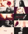 SWATH - twilight-series photo