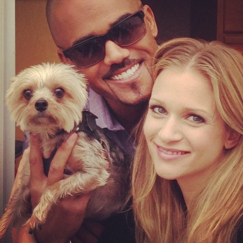 Shemar Moore 壁紙 probably with a maltese dog titled Shemar & AJ