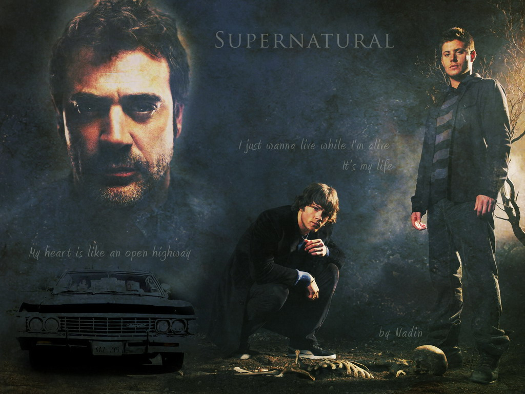 supernatural season 11 torrent