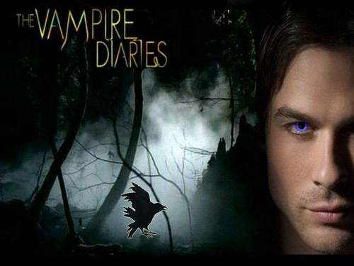 Vampire Diaries fond d'écran containing animé titled The Vampire Diaries