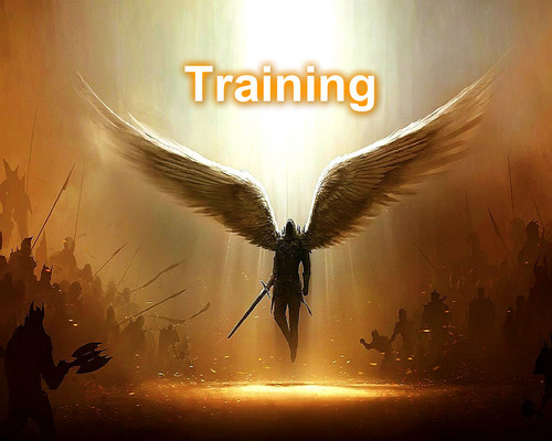 Training Angel