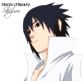 Sasuke Ichiwa