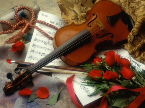 Daydreaming wallpaper containing a violist entitled Violin & Roses