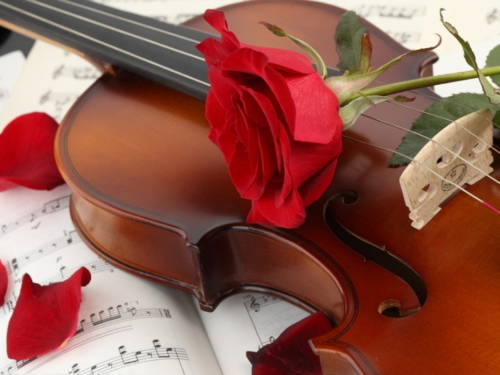 Daydreaming wallpaper with a violist, a cello, and a cellist called Violin & Roses