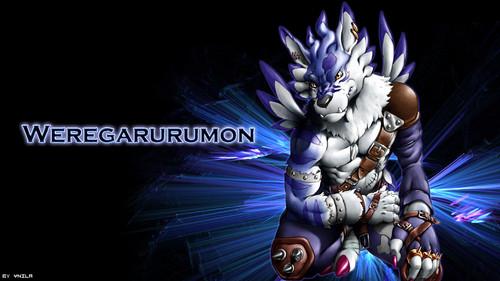 Digimon images Weregarurumon HD wallpaper and background ...