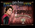 all like it..... - harry-potter photo