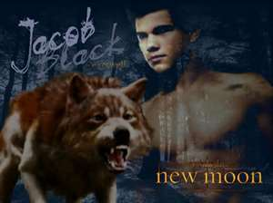 Jacob Black wallpaper called jacob