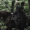 jaime and brienne - house-lannister photo
