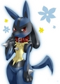 lucario girly - lucario photo