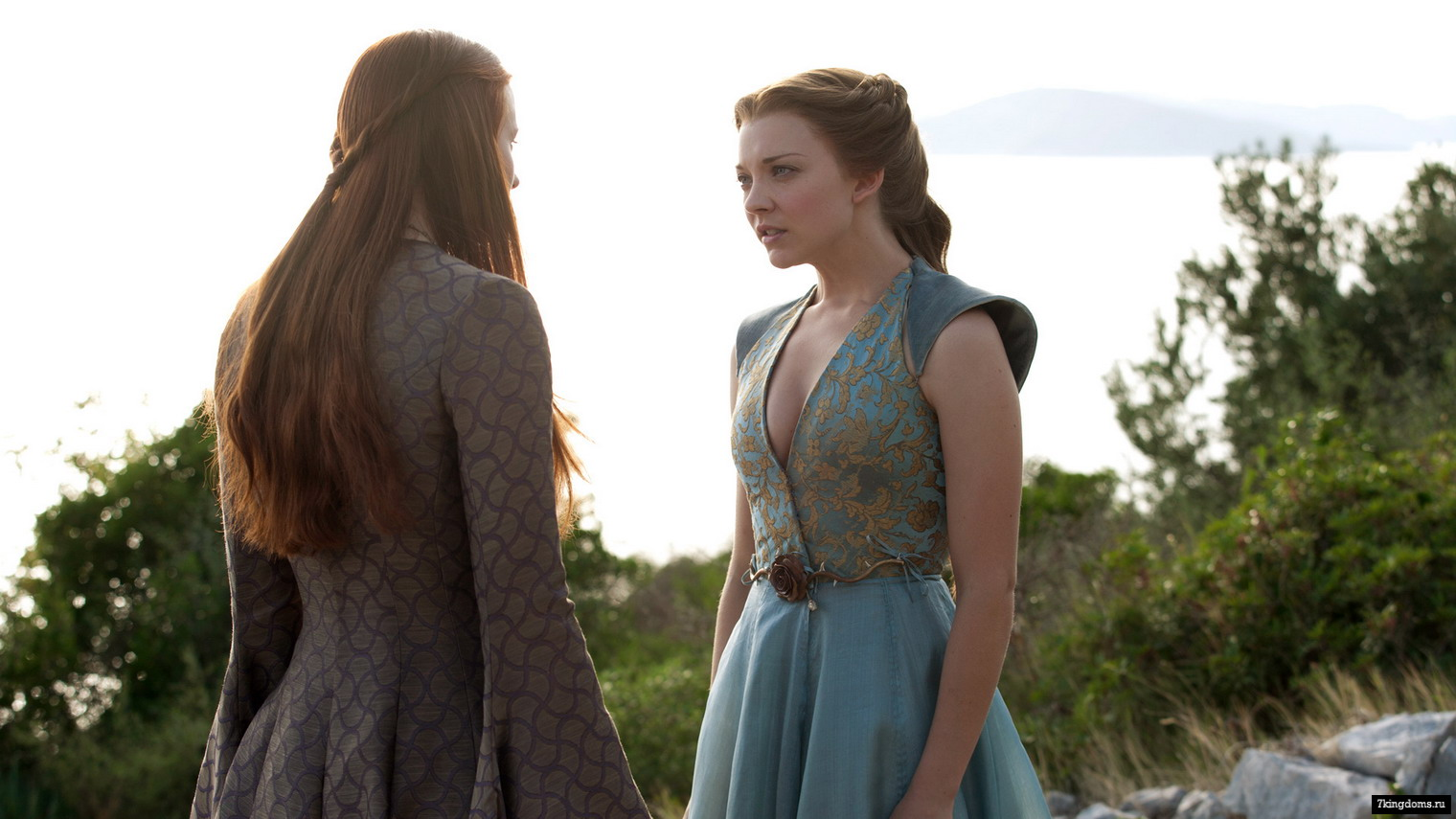 margaery and sansa