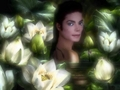 mj ^^ - michael-jackson photo