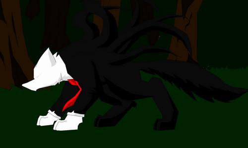 slender wolf