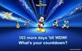 wdw countdown