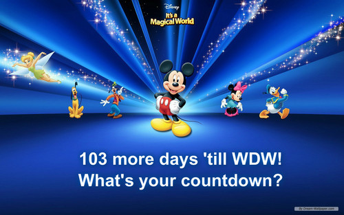 Disney Hintergrund called wdw countdown
