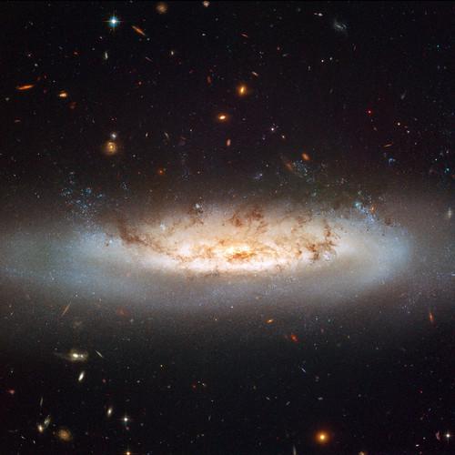 ~Random Astronomy~