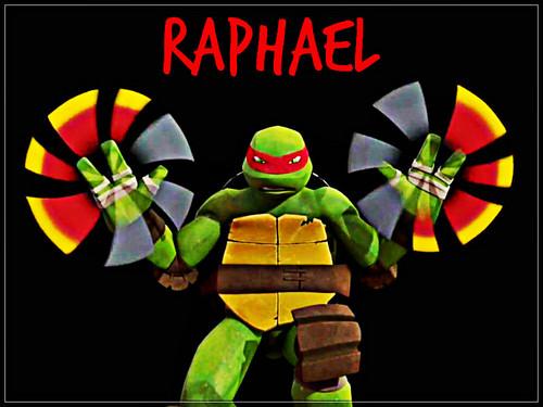 2012 Teenage Mutant Ninja Turtles wallpaper titled ★ TMNT ☆