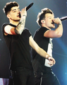  Zouis  - zayn-malik photo