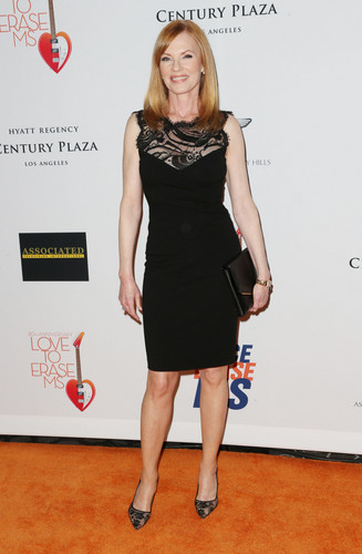 20th Annual Race to Erase MS Gala 'Love to Erase MS' 2013