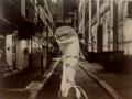 A Dolphin in a Dark Alley