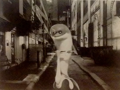 A Dolphin in a Dark Alley