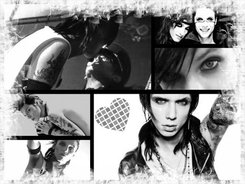 Andy <33333