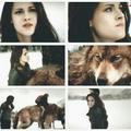 BD - twilight-series photo