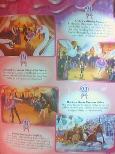 Barbie In The merah jambu Shoes Story