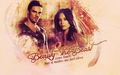 Beauty and the Beast - beauty-and-the-beast-cw wallpaper
