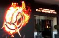 Catching Fire at Cannes - the-hunger-games photo