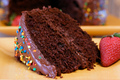 Chocolate Cake  - chocolate photo