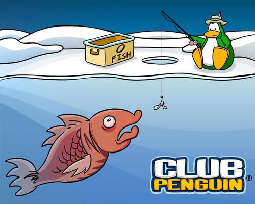 Club pinguin, penguin