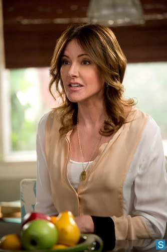 Christa Miller wallpaper probably containing a lunch titled Cougar town