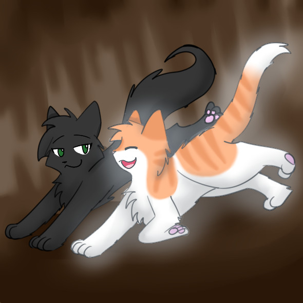 Fallen Leaves And Hollyleaf Images Wallpaper Background Photos