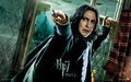 Harry Potter - harry-potter wallpaper