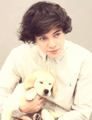 Harry! - harry-styles photo