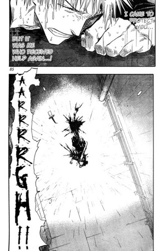 Ichigo Wants to Protect
