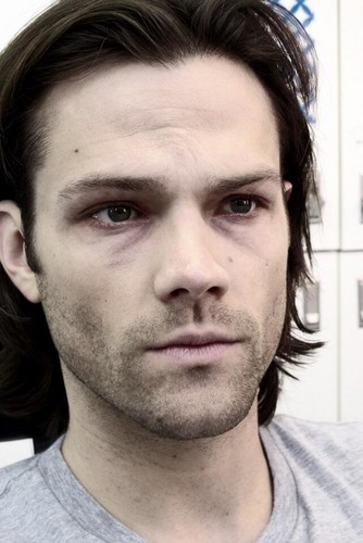 Sam Winchester wolpeyper with a portrait titled Jared (Sam)