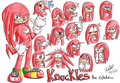 Knuckles the echidna - knuckles-the-echidna photo