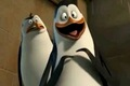 Kowalski is Fangirling - penguins-of-madagascar photo