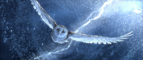 Legend-of-the-Guardians-The-Owls-of-GaHoole-movie-image