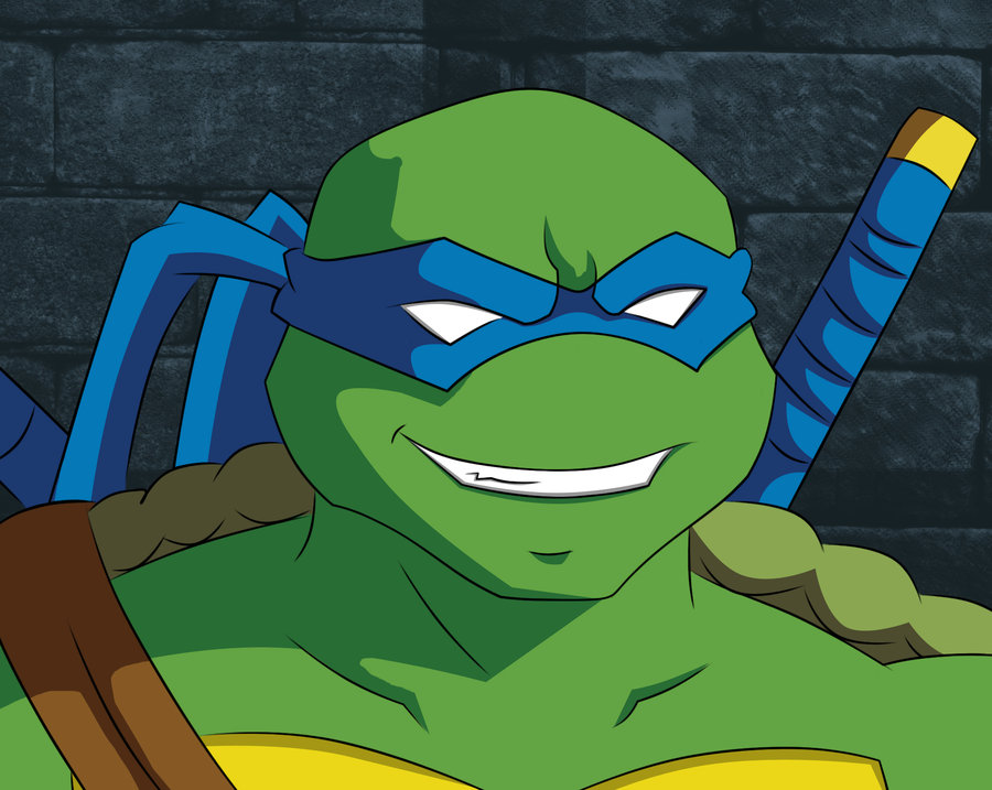 Teenage mutant ninja turtle face