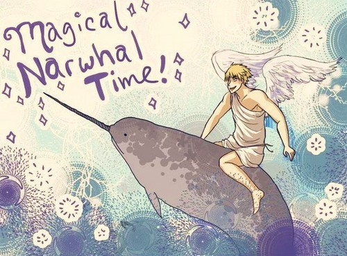 Magical Narwhal Time!