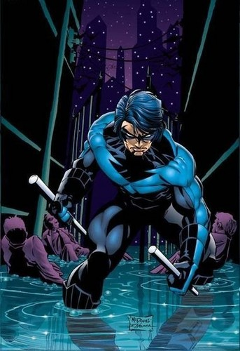 TheOfficialJLA fond d'écran possibly containing a diving suit and animé entitled NIGHTWING!!!!