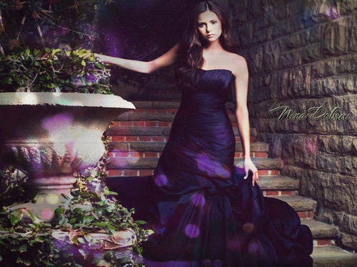 Nina Dobrev wallpaper with a bridesmaid, a gown, and a dinner dress titled Nina