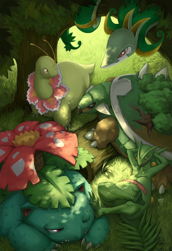 labyrinth75 images Pokemon - The Grass Starters Final ...